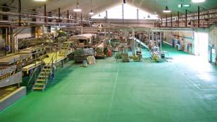Sơn nền nhà máy phân bón