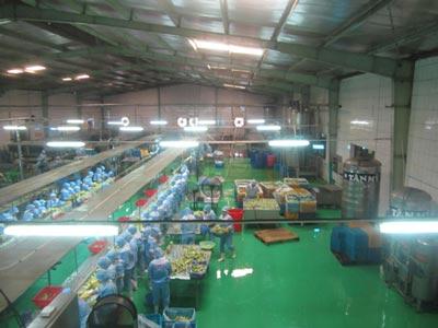 thi công sơn nền nhà xưởng tại Kiên Giang